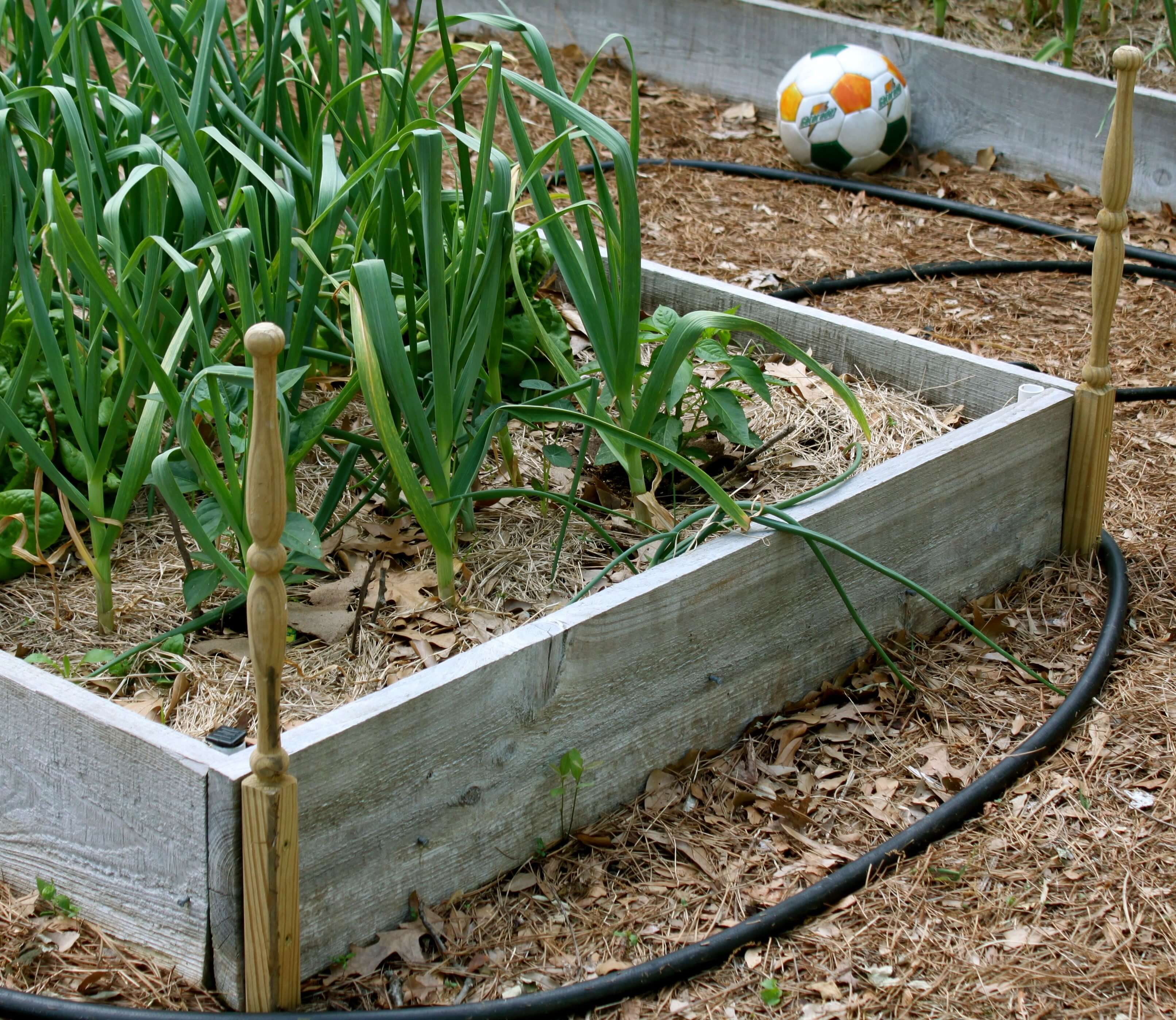 Raised Bed Hose Guides | Little House in the Suburbs