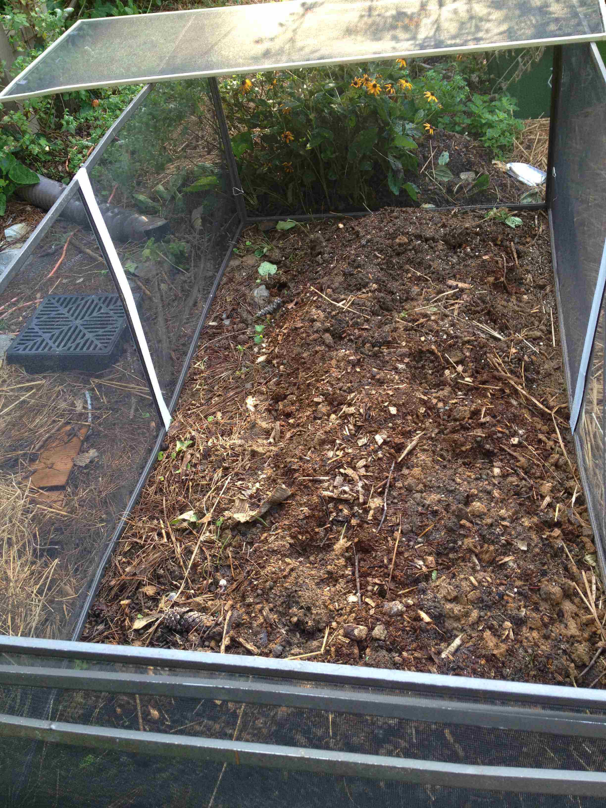 Bug Defense Cage From Old Window Screens | Little House in the Suburbs