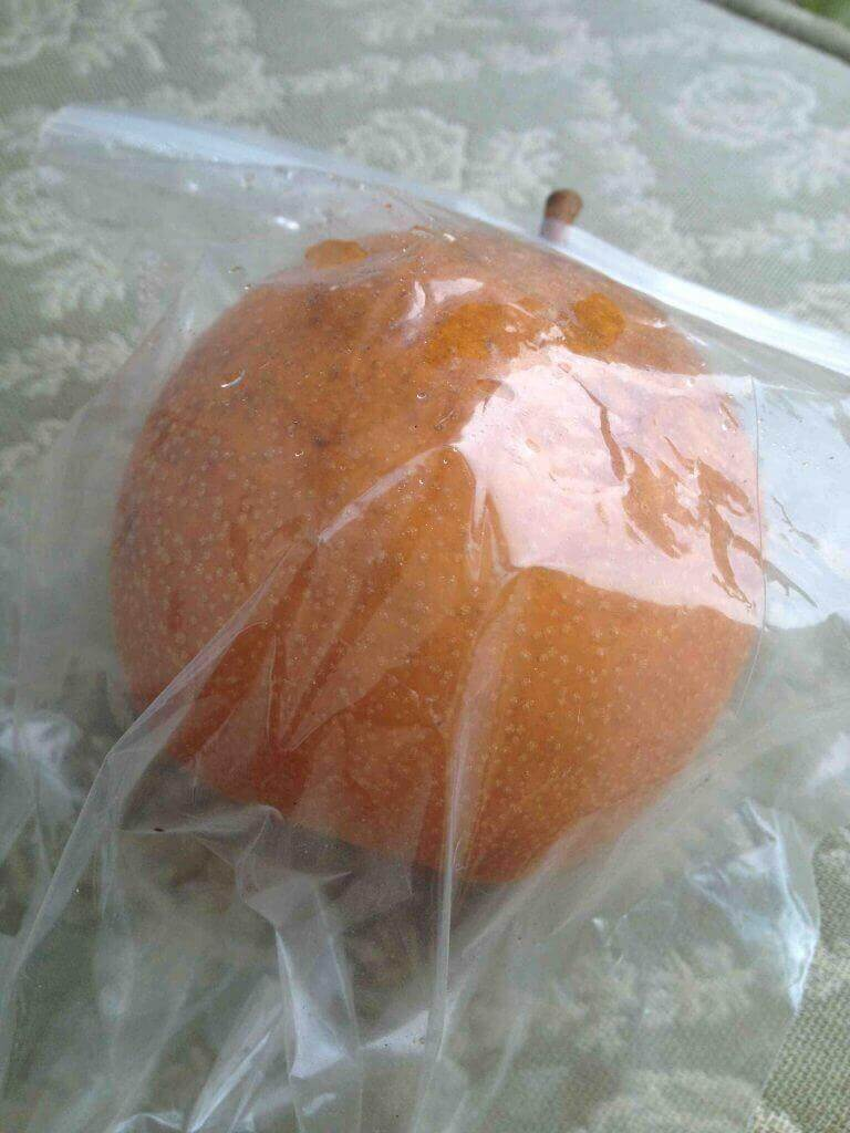 bagged-asian-pear